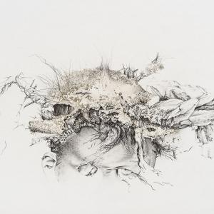 Ulrike Waninger - MIIPu1