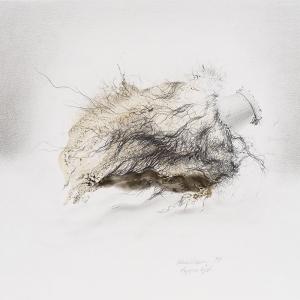 Ulrike Waninger - Puppnkpf