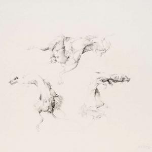 Ulrike Waninger - Mausstudie